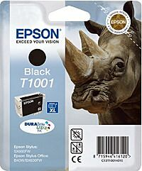 Epson T1001 Sort c13t10014010 Original