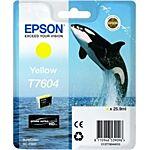 Epson T7604 Yellow Original